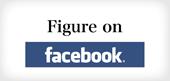 Figure Facebook